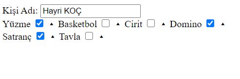 checkbox çoklu kayıt php