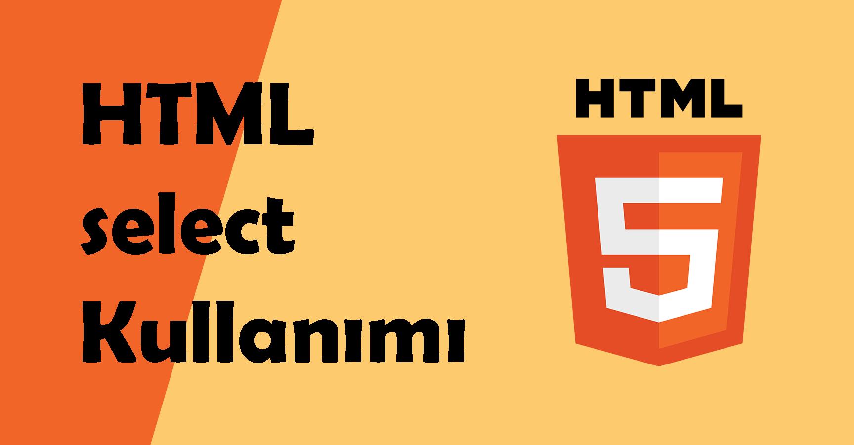 html select option kullanımı